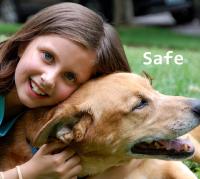 1B11-04-t-safe